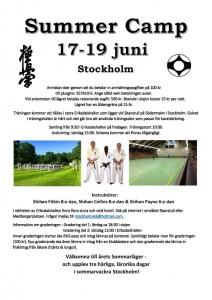 Sommerleir Stockholm 17 - 19 Juni 2016 Shihan Fitkin_Shihan Collins_Shihan Paine