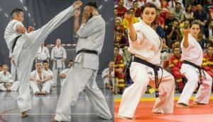 Masterclass Instructor / Kumite Camp